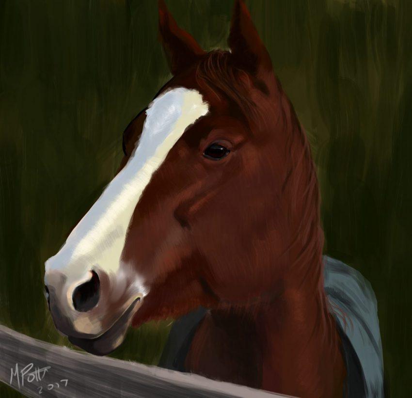 horsepaint2b