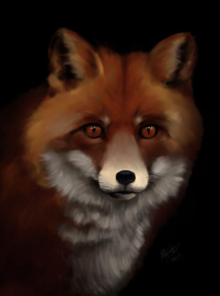 foxy5
